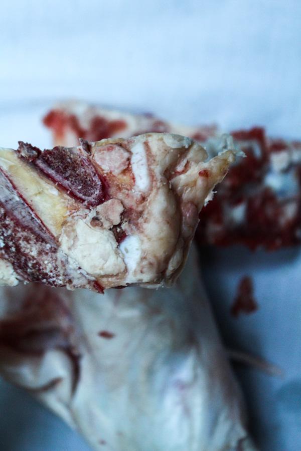 flesh-and-bones-2