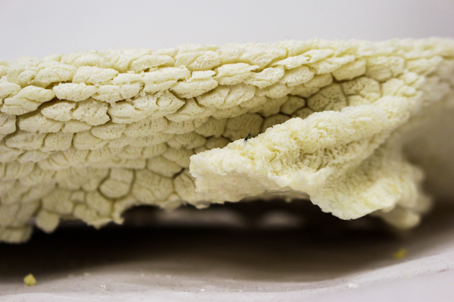 stomach-casts-1